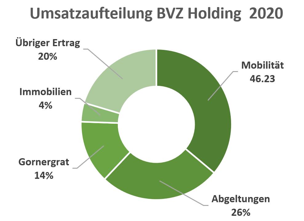 Umsatzaufteilung 2020 BVZ Holding Aktie